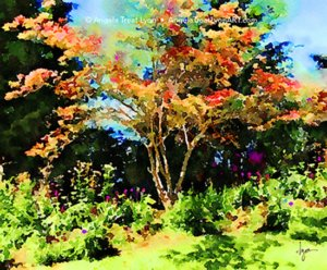 The Pinky Tree